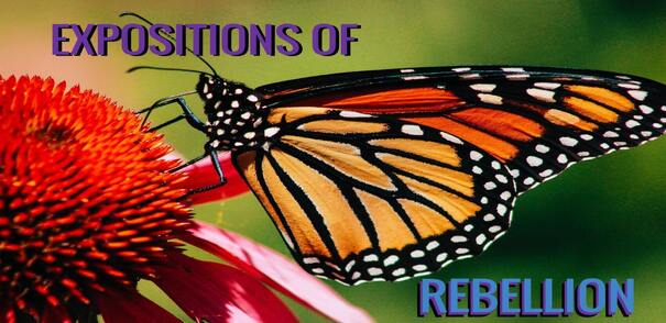 'EXPOSITIONS OF REBELLION' – A Call From The St. Louis Writers Group THE MONARCH WRITERS To Add Your Voice To The OngoingProtests